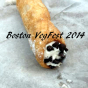Dispatch: Boston VegFest 2014 | Peaceful Dumpling